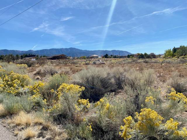 11520 Elena Drive NE, Albuquerque, NM 87122 (MLS #979612) :: The Buchman Group