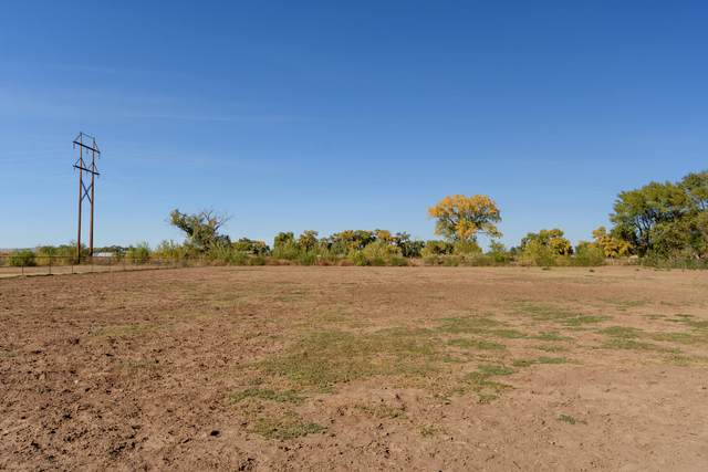 2037 Lakeview Road SW, Albuquerque, NM 87105 (MLS #979628) :: Campbell & Campbell Real Estate Services
