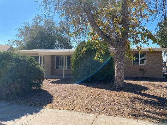 1205 Ralph Court NE, Albuquerque, NM 87112 (MLS #979644) :: The Buchman Group