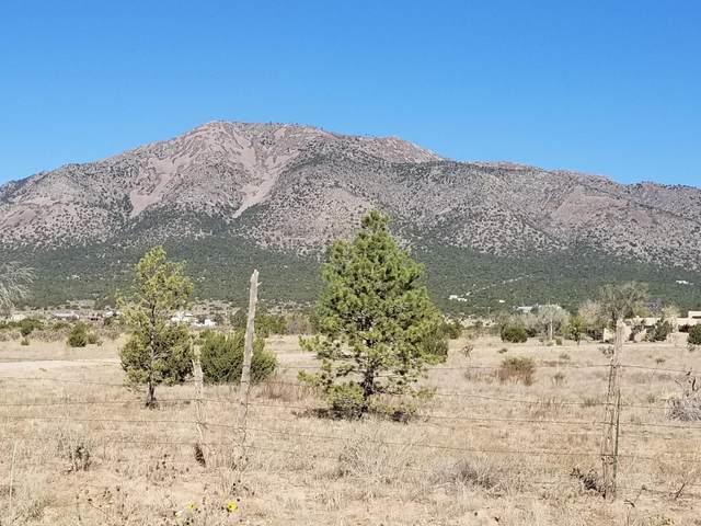 234 Entranosa Road, Edgewood, NM 87015 (MLS #979653) :: The Buchman Group