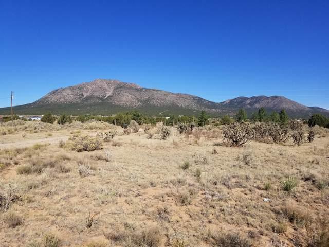 224 Entranosa Road, Edgewood, NM 87015 (MLS #979655) :: The Buchman Group