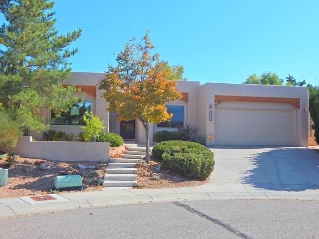12912 Thomte Road NE, Albuquerque, NM 87112 (MLS #979673) :: The Buchman Group