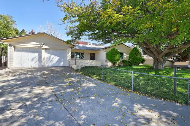 12225 Candelaria Road NE, Albuquerque, NM 87112 (MLS #979708) :: The Buchman Group