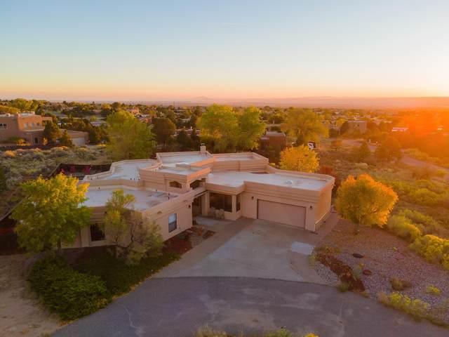 1146 Marigold Drive NE, Albuquerque, NM 87122 (MLS #979716) :: The Buchman Group
