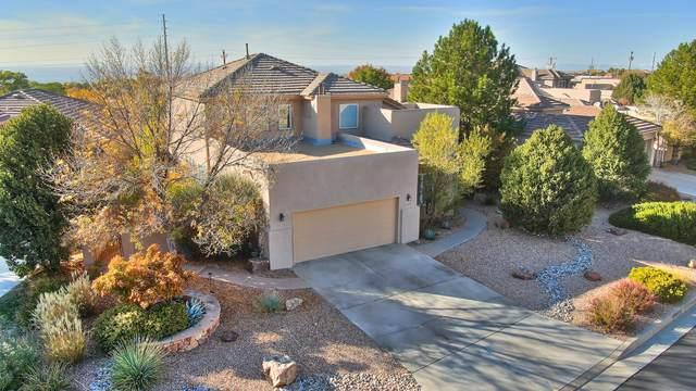 6109 Silver Leaf Trail NE, Albuquerque, NM 87111 (MLS #979740) :: The Buchman Group