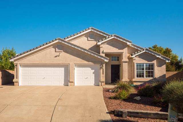 8420 La Paloma Court NW, Albuquerque, NM 87120 (MLS #979741) :: The Buchman Group