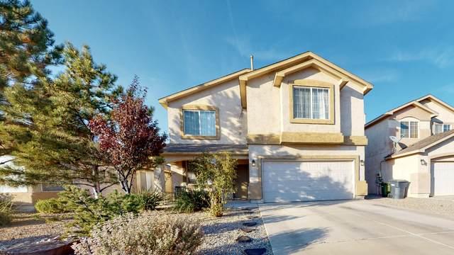 717 Soothing Meadows Drive NE, Rio Rancho, NM 87144 (MLS #979744) :: The Buchman Group