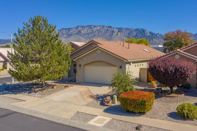 7124 Toulon Drive NE, Albuquerque, NM 87122 (MLS #979755) :: The Bigelow Team / Red Fox Realty