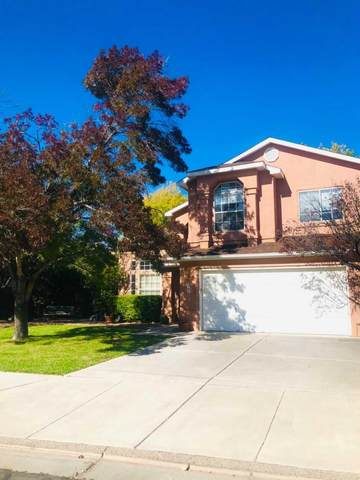 4219 Rancho Bonito Drive NW, Albuquerque, NM 87120 (MLS #979765) :: The Bigelow Team / Red Fox Realty