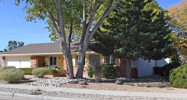 3409 Pickard Avenue NE, Albuquerque, NM 87110 (MLS #979791) :: The Bigelow Team / Red Fox Realty