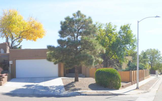 12700 Rover Ave NE, Albuquerque, NM 87112 (MLS #979813) :: The Bigelow Team / Red Fox Realty