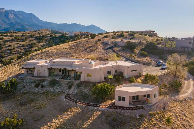 13 Alto Court, Placitas, NM 87043 (MLS #979849) :: The Bigelow Team / Red Fox Realty