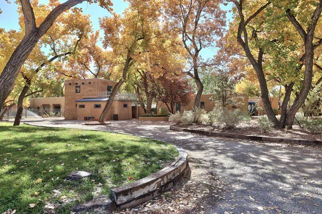 336 Rincon Road, Corrales, NM 87048 (MLS #979885) :: Berkshire Hathaway HomeServices Santa Fe Real Estate