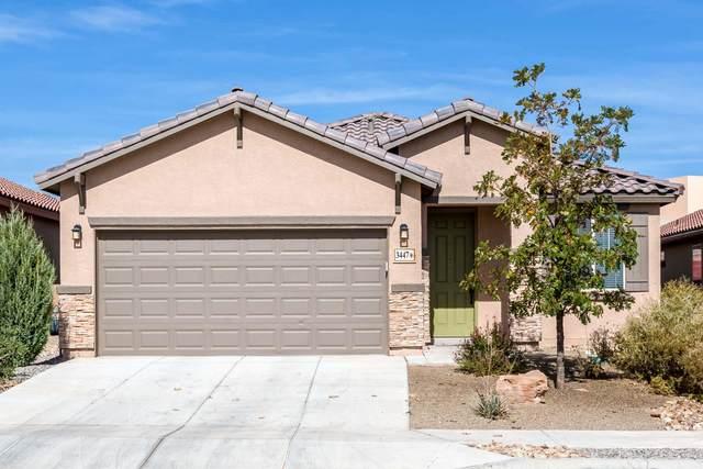 3447 Llano Vista Loop NE, Rio Rancho, NM 87124 (MLS #979894) :: The Bigelow Team / Red Fox Realty