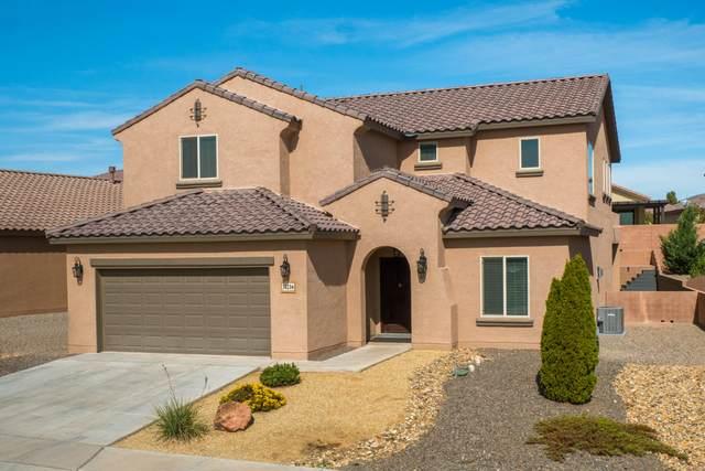 3821 Puenta Alto Drive NE, Rio Rancho, NM 87124 (MLS #979915) :: The Bigelow Team / Red Fox Realty