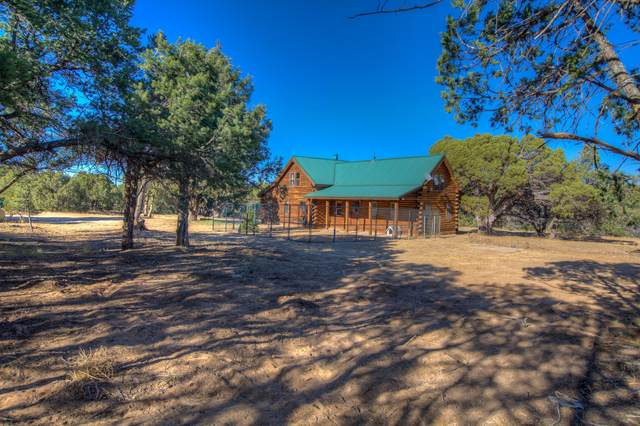 25 Headley Road, Tijeras, NM 87059 (MLS #979932) :: Campbell & Campbell Real Estate Services