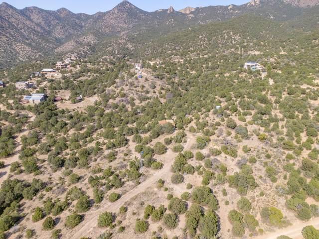 46 Circle Drive NE, Albuquerque, NM 87122 (MLS #979942) :: The Buchman Group