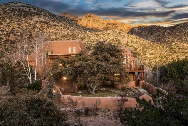 301 Spring Creek Place NE, Albuquerque, NM 87122 (MLS #979957) :: The Bigelow Team / Red Fox Realty