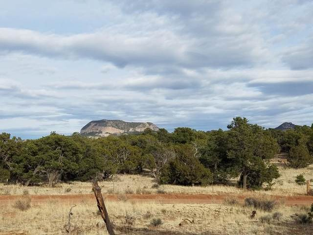 Lot 62 Sawtooth Drive, Pie Town, NM 87827 (MLS #980086) :: The Bigelow Team / Red Fox Realty