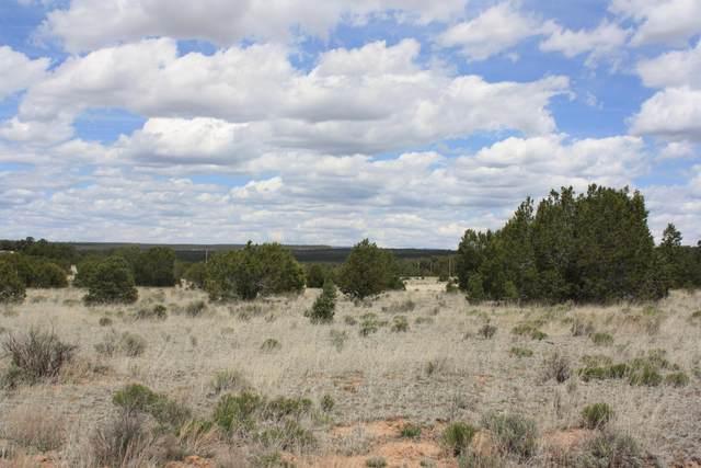 337 Pine Meadows Unit 4, Ramah, NM 87321 (MLS #980111) :: Keller Williams Realty
