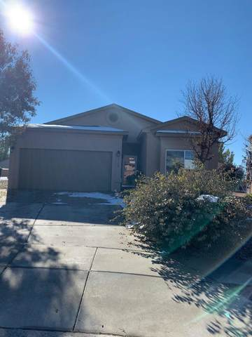 1118 Desert Sunflower Drive NE, Rio Rancho, NM 87144 (MLS #980130) :: Campbell & Campbell Real Estate Services