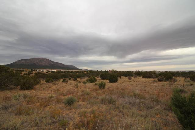 7 Mimosa Court, Edgewood, NM 87015 (MLS #980144) :: The Buchman Group