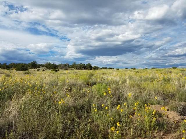 Lot 108 Indian Springs, Quemado, NM 87829 (MLS #980153) :: The Buchman Group