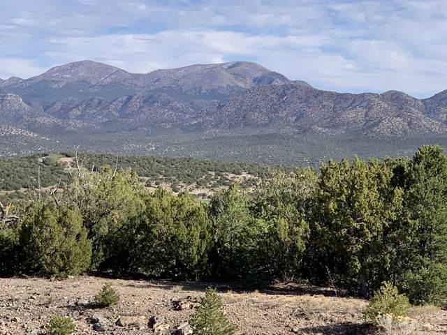 17 Prado Vista, Sandia Park, NM 87047 (MLS #980214) :: The Bigelow Team / Red Fox Realty