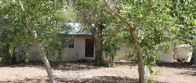 9710 Rio Grande Boulevard NW, Albuquerque, NM 87114 (MLS #980304) :: The Bigelow Team / Red Fox Realty