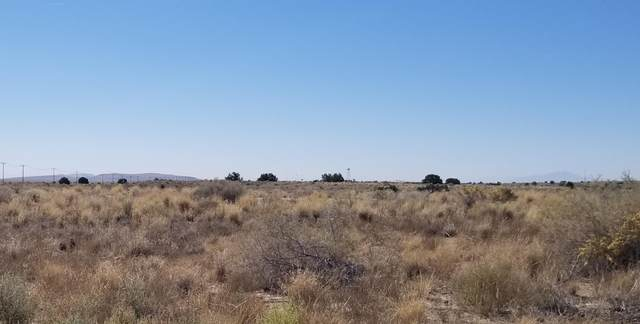 I 40 Frontage Road SW, Albuquerque, NM 87068 (MLS #980375) :: The Bigelow Team / Red Fox Realty