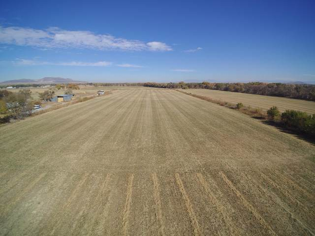 Square Deal Farm, Los Chavez, NM 87002 (MLS #980384) :: Keller Williams Realty