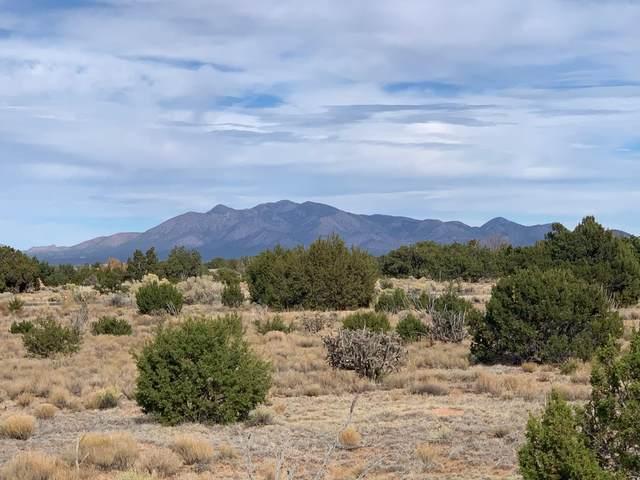 14 Stagecoach Trail, Sandia Park, NM 87047 (MLS #980393) :: Sandi Pressley Team
