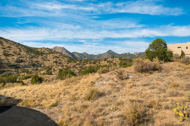 31 A E Tierra Monte NE, Albuquerque, NM 87122 (MLS #980463) :: The Bigelow Team / Red Fox Realty
