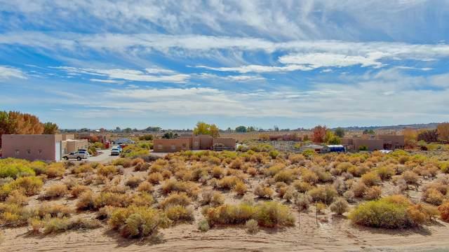 107 Todos Juntos Road NW, Corrales, NM 87048 (MLS #980485) :: The Buchman Group