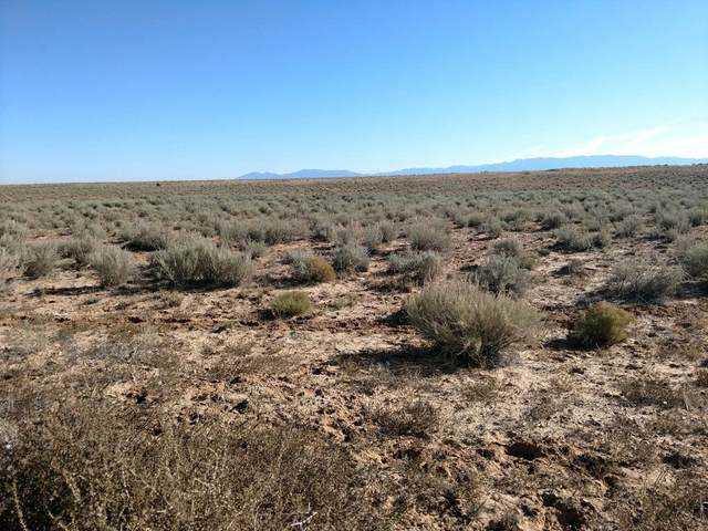 Vacant Land-Tierra Grande Subd, Belen, NM 87002 (MLS #980549) :: Keller Williams Realty
