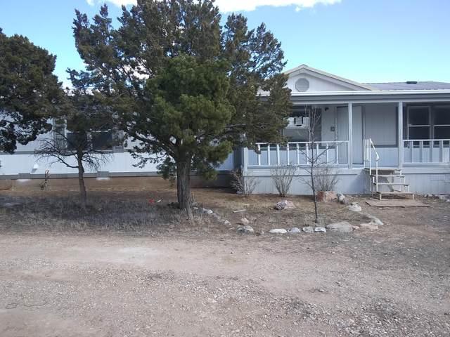 700 Monte Alto Avenue, Mountainair, NM 87036 (MLS #980589) :: Keller Williams Realty