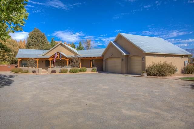 513 Roehl Road NW, Los Ranchos, NM 87107 (MLS #980625) :: HergGroup Albuquerque