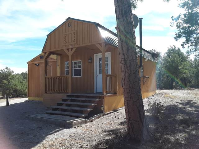 14 Lucero Lane, Thoreau, NM 87323 (MLS #980739) :: Campbell & Campbell Real Estate Services