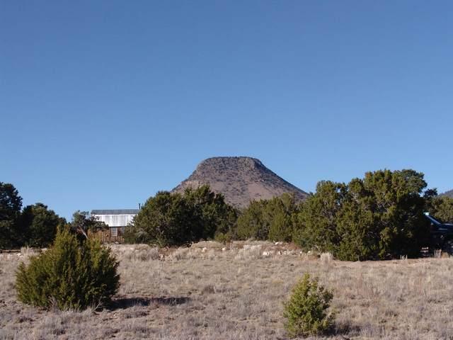 96 Sugarloaf Trail, Datil, NM 87821 (MLS #980839) :: The Buchman Group