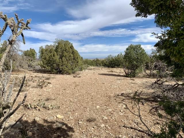 7 Snowflake Trail, Edgewood, NM 87015 (MLS #980882) :: The Buchman Group