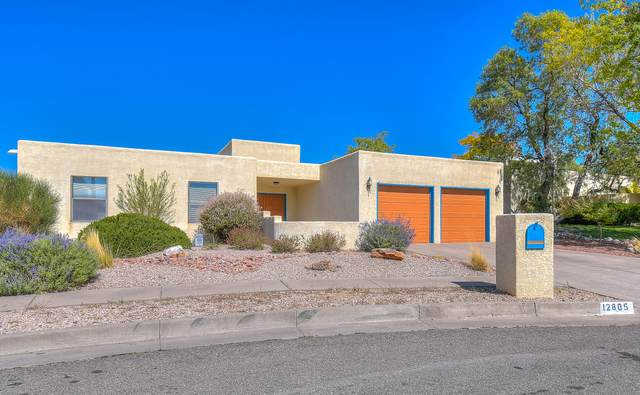 12805 Arroyo De Vista NE, Albuquerque, NM 87111 (MLS #980886) :: The Bigelow Team / Red Fox Realty