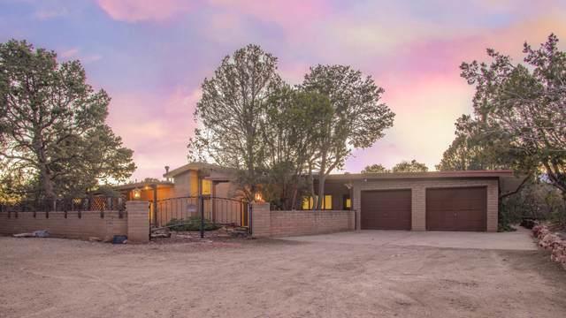18 Olive Road, Sandia Park, NM 87047 (MLS #980891) :: The Bigelow Team / Red Fox Realty