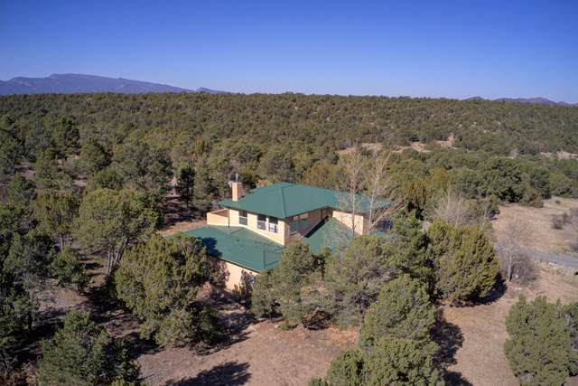 51 Woodlands Drive, Tijeras, NM 87059 (MLS #980911) :: Campbell & Campbell Real Estate Services