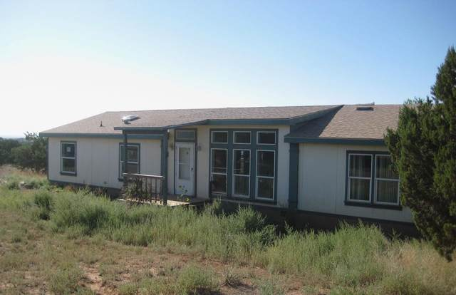 23 Brandy Court, Moriarty, NM 87035 (MLS #980937) :: The Bigelow Team / Red Fox Realty