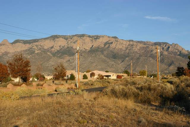 8700 Glendale Avenue NE, Albuquerque, NM 87122 (MLS #980990) :: The Buchman Group