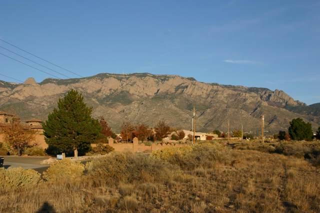 8720 Glendale Avenue NE, Albuquerque, NM 87122 (MLS #980992) :: The Buchman Group
