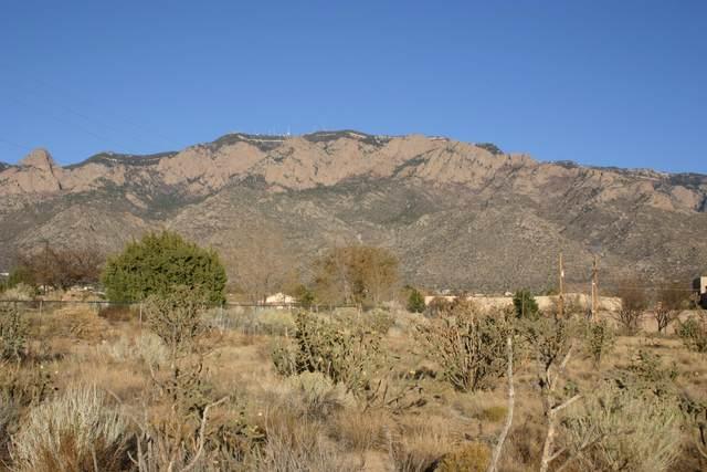 Richfield Avenue NE, Albuquerque, NM 87122 (MLS #981003) :: The Buchman Group
