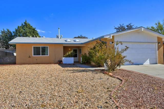 12205 Emperor Drive NE, Albuquerque, NM 87123 (MLS #981015) :: Sandi Pressley Team