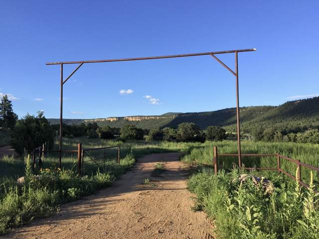 Magic Canyon Park Ranch, Guadalupita, NM 87722 (MLS #981087) :: Keller Williams Realty