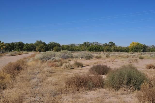 Subd: Gurule Estates Lot: 8, Los Lunas, NM 87031 (MLS #981139) :: Keller Williams Realty